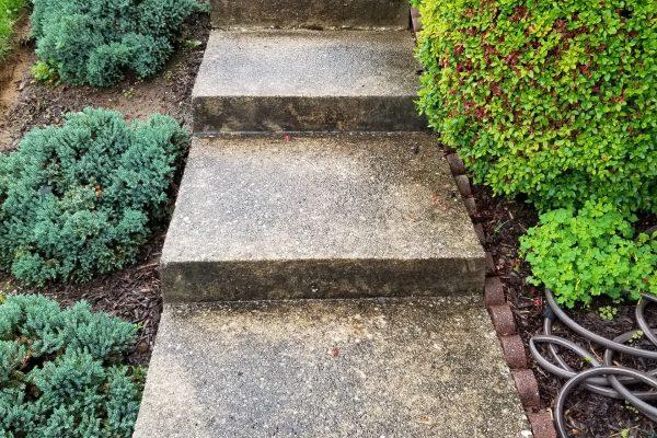 Concrete Sidewalk Cleaning | Before Pressure Wash | Pikesville MD